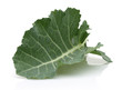 Fresh Collard Greens