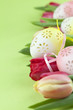 Flowery Easter eggs and tulips border