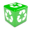 Green recycle dice