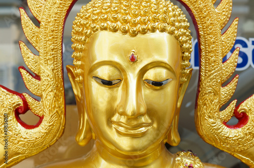 The gold buddha