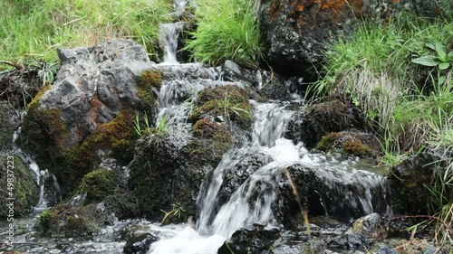 Forest stream over green mossy rocks