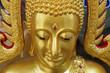 The gold buddha
