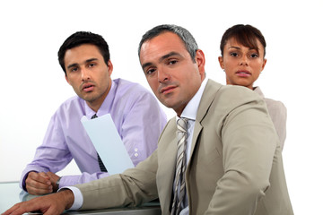 A team of business professionals having a meeting