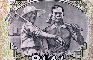 North Korean Worker & Farmer