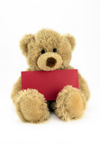 Teddy holding a blank red card.