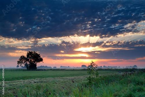 dramatic sunrise over pasture