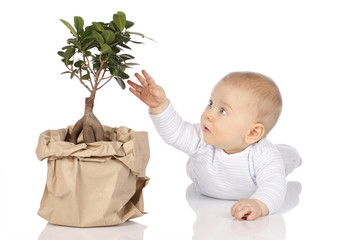 Baby greift nach kleinem Baum - Baby with Bonsai Tree
