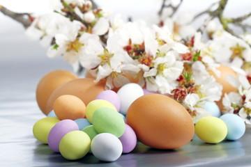 Mandorlo selvatico fiorito e ovette di Pasqua