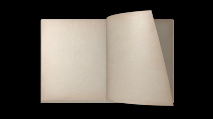 flip through the pages-