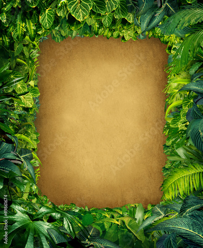 Wild Jungle Frame