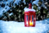 christmas light in the snow