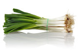 Fresh Scallion