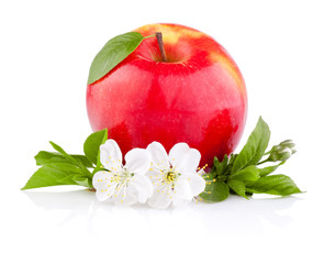 Single Red Apples with Leaf and Flowers isolated on a white back