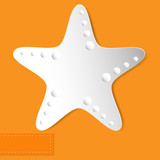 starfish orange background