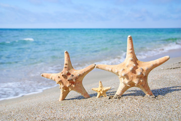 family holiday concept - sea-stars walking on sand beach against