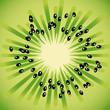 Texture kiwi