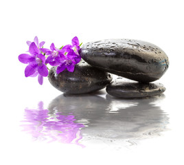 zen Stones with purple flowers