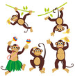 Set funny monkeys