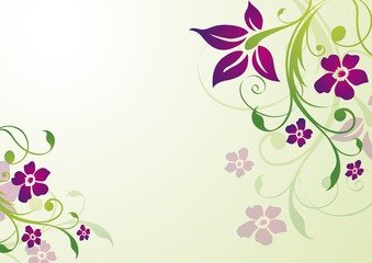 elegant vector template with flowers
