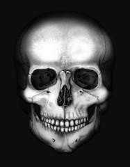 skull in the darkness