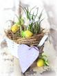 Frühlingskorb mit Herz