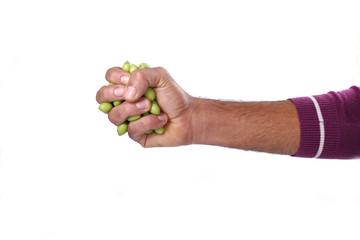 pugno d'olive