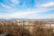 Turin view