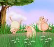 Three molehogs playing