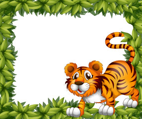 A frame with a tiger