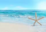 Starfish and wave