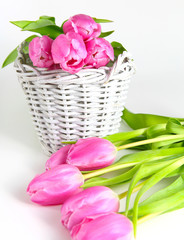 Rosa Tulpen und weißer Korb