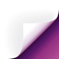 Violette Papierecke gebogen