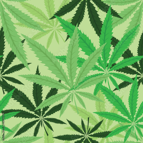Wallpaper with green leavs of cannabis