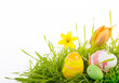 easter decoration green grassland