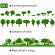 Summer greenwood. Set 1.