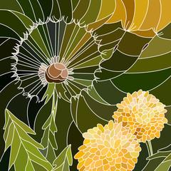 Vector illustration of flowers dandelion.