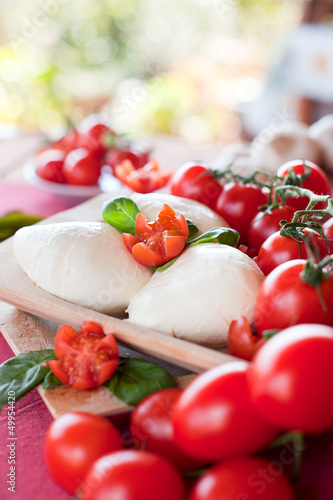 buffalo mozzarella basil and tomatoes in the wooden plates