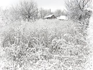 Village In Winter. Snow Landscape.