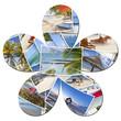fleur de souvenirs de vacances à l'île Maurice