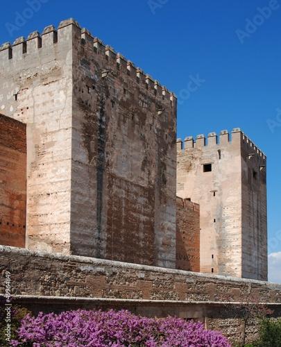 Castle, Palace of Alhambra, Granada, Spain.