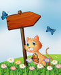 An orange cat with a wooden arrow board