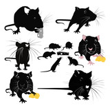 Rats of the mouse rodents animals cheese poster