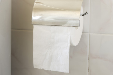 toilet paper roll on the holder