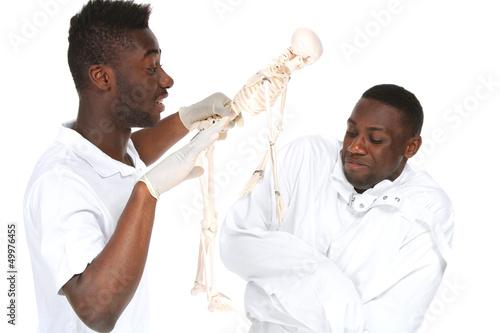 Zwei Männer, ein Skelett
