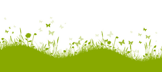 Grüne Frühlingswiese