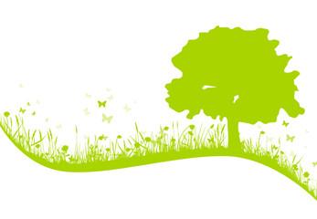 Grüne Wiese mit Baum