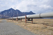 Trans-Alaska Oil Pipeline (USA) - 49978455