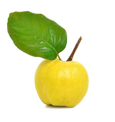 Ripe yellow quince