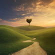 Leinwanddruck Bild - Tree heart on hill