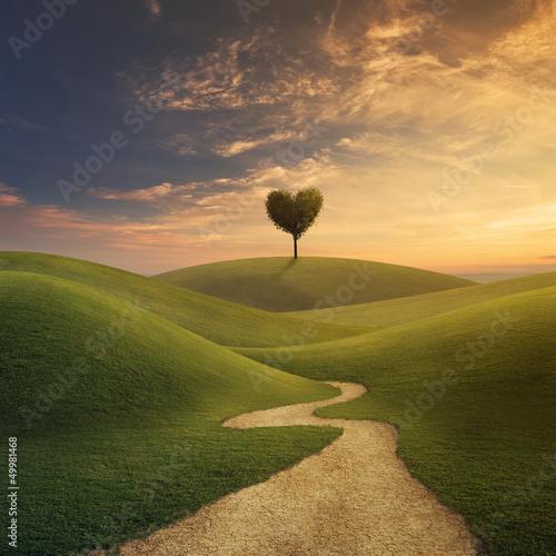 Leinwanddruck Bild Tree heart on hill